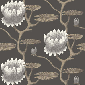 95-4026 Contemporary Restyled Cole & Son