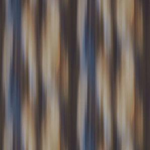 312505 Akaishi Wallcoverings Zoffany