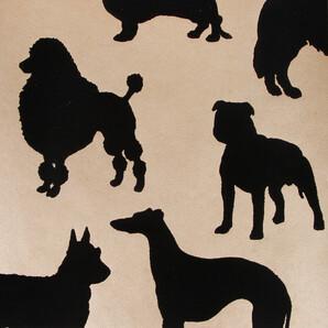 w587202 Wallpaper Album 6 Osborne & Little