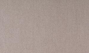 59311 Flamant Suite 5 Arte