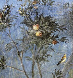 1309 Raphael 3 Atlas
