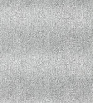 111577 Momentum IV Harlequin