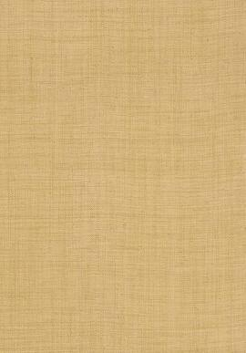 T13039 Grasscloth Resource 3 Thibaut