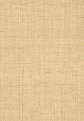 T13040 Grasscloth Resource 3 Thibaut