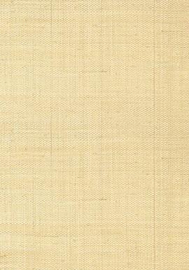 T41106 Grasscloth Resource 3 Thibaut