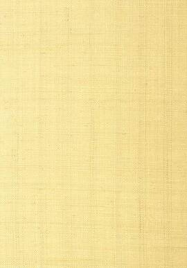 T41108 Grasscloth Resource 3 Thibaut