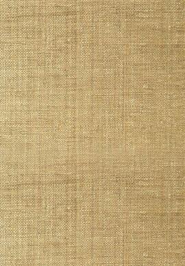 T41110 Grasscloth Resource 3 Thibaut