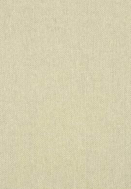 T41134 Grasscloth Resource 3 Thibaut