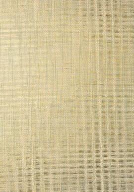 T41146 Grasscloth Resource 3 Thibaut
