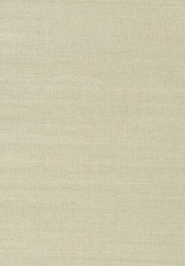 T41167 Grasscloth Resource 3 Thibaut
