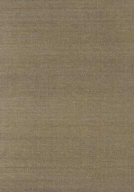 T41176 Grasscloth Resource 3 Thibaut