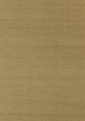 T41177 Grasscloth Resource 3 Thibaut