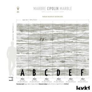 LPM017-X Trompe LOeil Vol-V Koziel