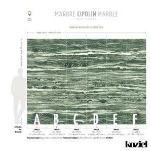 LPM027-X Trompe LOeil Vol-V Koziel