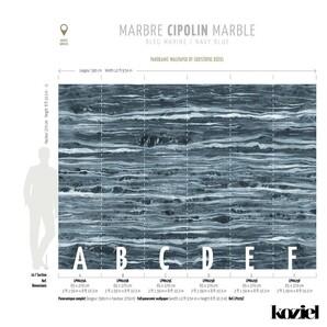 LPM029-X Trompe LOeil Vol-V Koziel