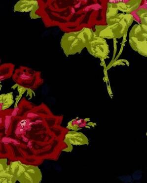 NCW4033-05 Paradiso Nina Campbell