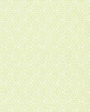 T1881 Geometric Thibaut