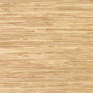 T5049 Grasscloth Resource Thibaut