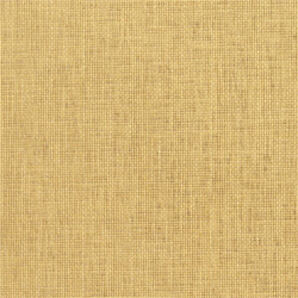 T5073 Grasscloth Resource Thibaut