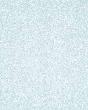 T5776 Biscayne Thibaut