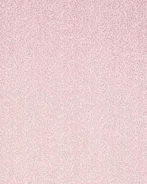 T5779 Biscayne Thibaut