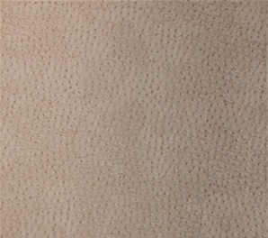 T6831 Texture Resource 3 Thibaut