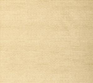 T6845 Texture Resource 3 Thibaut