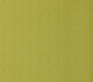 T6866 Texture Resource 3 Thibaut