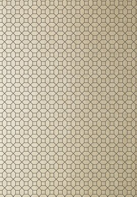 T11025 Geometric Resource 2 Thibaut