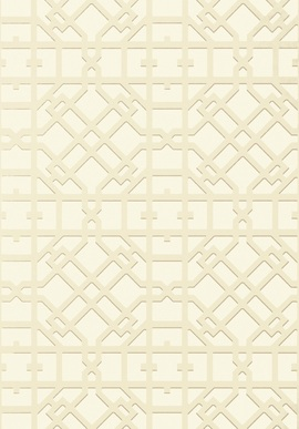T11029 Geometric Resource 2 Thibaut