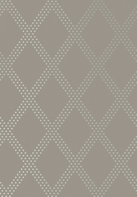 T11039 Geometric Resource 2 Thibaut