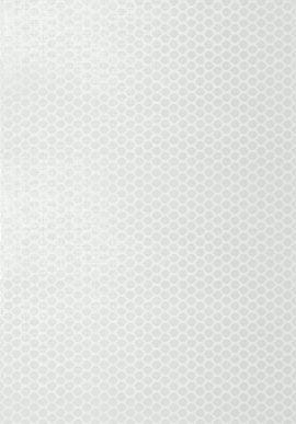 T11054 Geometric Resource 2 Thibaut